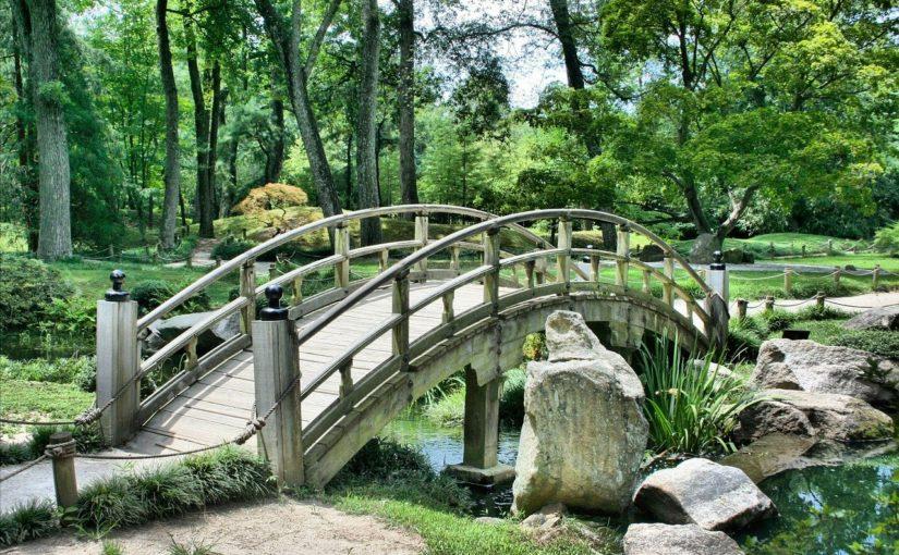 Ładny ,a także zadbany ogród to zasługa wielu godzin spędzonych  w jego zaciszu w trakcie pielegnacji.